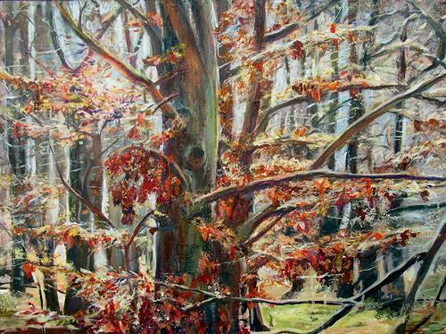 Renée König, Buche im Februar, Landscapes: Winter, Plants: Trees, Post-Impressionism, Expressionism