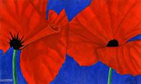 MartinusLinzer-Plants-Flowers-Nature-Miscellaneous-Contemporary-Art-Contemporary-Art