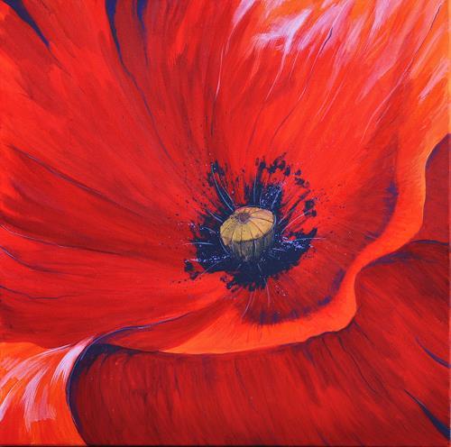 Daniel Gerhard, Makro-Mohn 3, Plants: Flowers, Times: Summer