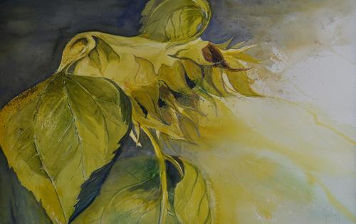 Daniel Gerhard, Verblüht, Nature: Miscellaneous, Times: Autumn