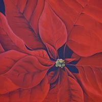 Daniel-Gerhard-Plants-Flowers-Times-Winter