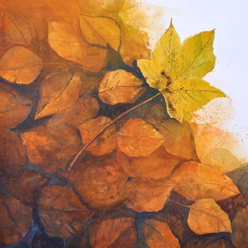 Daniel Gerhard, herbstlich, Plants: Trees, Times: Autumn