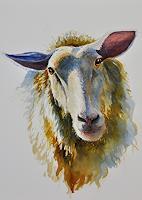 Daniel-Gerhard-Animals-Land-Nature-Miscellaneous