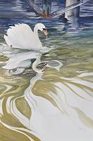 Daniel-Gerhard-Animals-Water-Nature-Water-Modern-Age-Abstract-Art