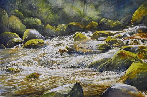 Daniel Gerhard, im Lorzetobel, Nature: Water, Landscapes: Summer
