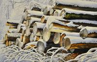 Daniel-Gerhard-Landscapes-Winter-Plants-Trees-Modern-Times-Realism