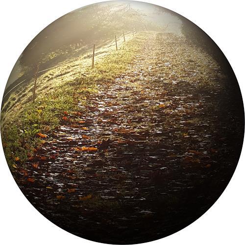 Sankofa, Herbst - konserviert, Landscapes: Autumn, Times: Autumn, Hyperrealism