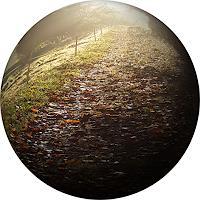 Sankofa-Landscapes-Autumn-Times-Autumn-Modern-Age-Photo-Realism-Hyperrealism