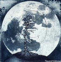 Tamara Valdovino, Creciendo bajo la luz de la luna