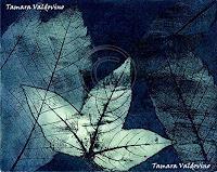 Tamara Valdovino, luminous leaves