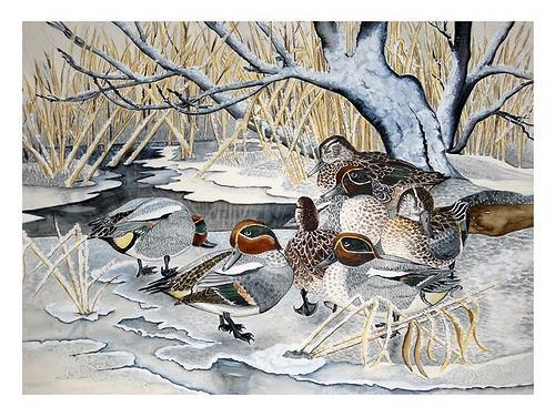 Maria Inhoven, Krickenten am Teich, Animals: Air, Nature: Water, Naturalism, Expressionism