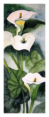 Maria Inhoven, Calla, Plants: Flowers, Nature: Earth, Naturalism