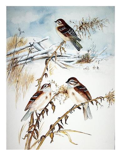 Maria Inhoven, Winterspatzen, Animals: Air, Times: Winter, Naturalism