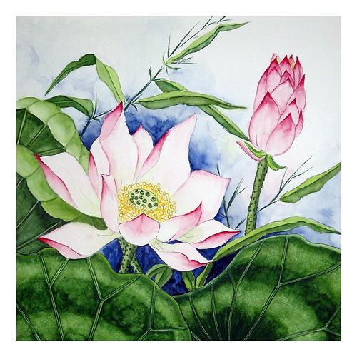 Maria Inhoven, Lotus 2, Plants: Flowers, Nature: Water, Naturalism