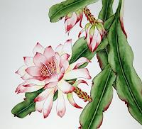 Maria-Inhoven-Plants-Plants-Flowers-Modern-Age-Naturalism