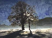 Eva-Maria-Mueller-1-Landscapes-Plains-Modern-Age-Impressionism