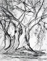 Ute-Kleist-Nature-Plants-Trees-Contemporary-Art-Contemporary-Art