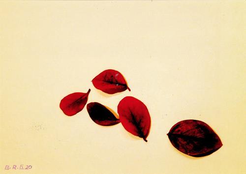 Brigitte Raz-Goldau, Fünf Herbstblätter 1 - 3  Nr. 1, Plants, Nature, Contemporary Art