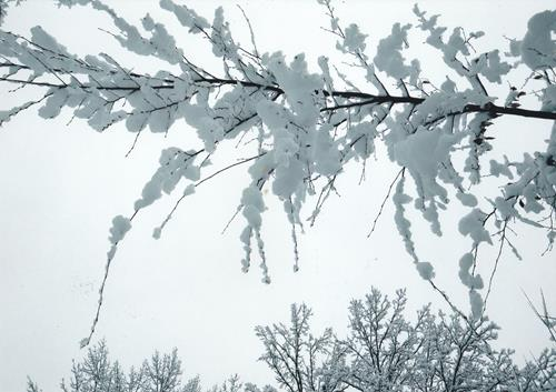 Brigitte Raz-Goldau, Winter 2021  1-5    Nr. 4, Landscapes: Winter, Nature, Contemporary Art