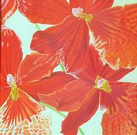 Anne Petschuch, Orchideen