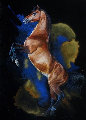 steigendes pferd malen