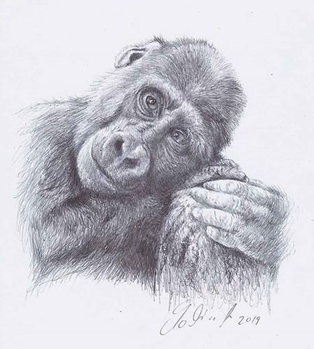 Antonio Molina, Junger Gorilla, Animals: Land, Nature: Wood, Abstract Art