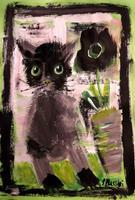 s. messerli, Katze