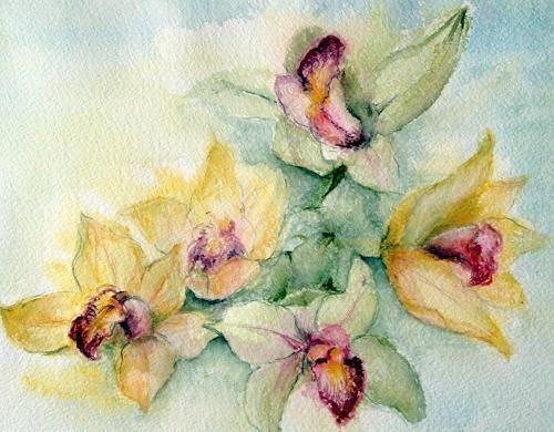 romy latscha, Orchideen, Plants: Flowers, Nature: Miscellaneous, Contemporary Art