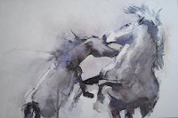 webo-Animals-Land-Movement