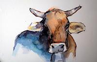 webo-Animals-Land-Animals