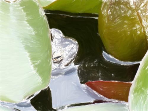Klaus Ackerer, Schwimmen kann ich auch alleine, Fantasy, Abstract Art