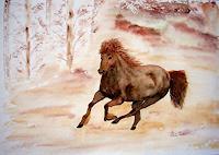 Ulrike-Kroell-Movement-Animals-Land-Contemporary-Art-Contemporary-Art