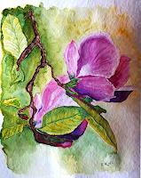 U. Kröll, Magnolienblüten