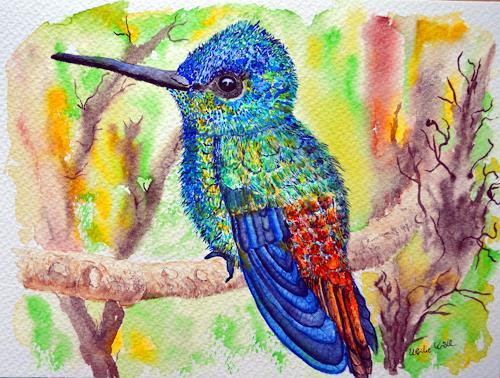 Ulrike Kröll, Kolibri in schillernden Farben, Animals: Air, Animals: Land, Naturalism