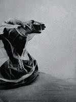 Carmen-Renn-Miscellaneous-Contemporary-Art-Contemporary-Art