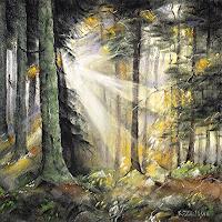 Konrad-Zimmerli-Landscapes-Nature-Wood