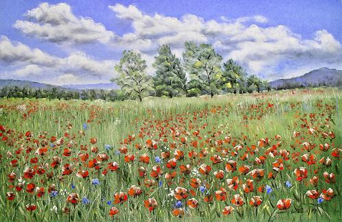 Konrad Zimmerli, Wauwilermoos, Landscapes: Summer, Nature: Miscellaneous, Naturalism, Expressionism
