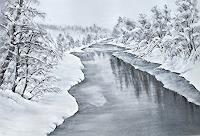 Konrad-Zimmerli-Landscapes-Winter-Nature-Water-Modern-Age-Naturalism