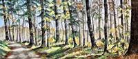 Konrad-Zimmerli-Landscapes-Autumn-Nature-Wood-Modern-Age-Naturalism
