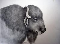 Saza-Bacheh-Miscellaneous-Animals-Humor