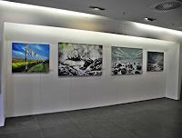 Beate-Fritz-Nature-Water-Contemporary-Art-Contemporary-Art