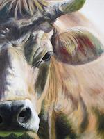 Vera-Kaeufeler-Animals-Land-Modern-Age-Photo-Realism