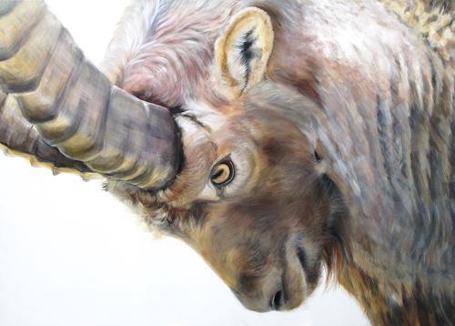 Vera Käufeler, Ready to battle, Nature, Animals: Land, Naturalism