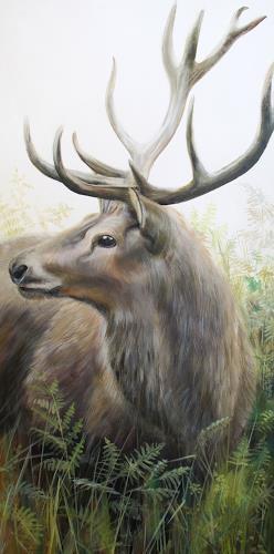 Vera Käufeler, Rothirsch, Animals: Land, Nature