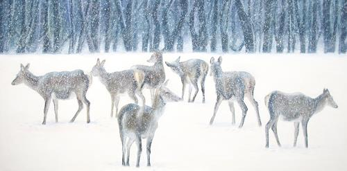 Vera Käufeler, Schneegestöber, Animals: Land, Landscapes: Winter