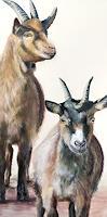 Vera-Kaeufeler-Animals-Nature-Modern-Age-Naturalism