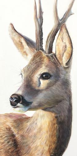 Vera Käufeler, Capriolus, Nature, Animals: Land, Photo-Realism