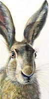 Vera-Kaeufeler-Animals-Land-Nature-Earth-Modern-Age-Photo-Realism