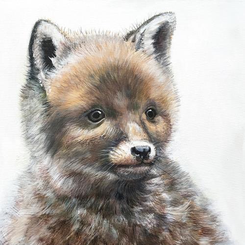 Vera Käufeler, Foxli - neugierig, Animals: Land, Nature, Photo-Realism
