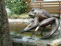 Jan-Kocnar--Kral-Smetana-Nature-Water-Animals-Water